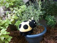 Plush Yellow Ladybug