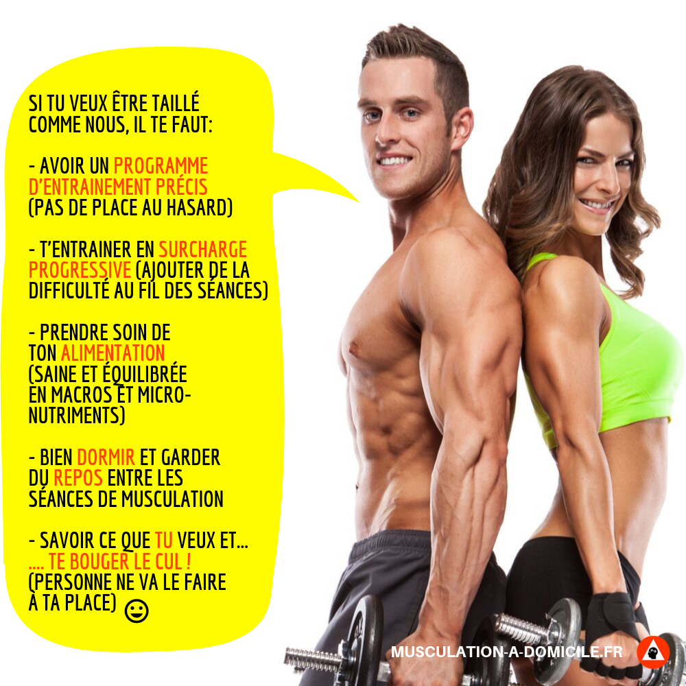 Ebook Musculation Gratuit Pdf