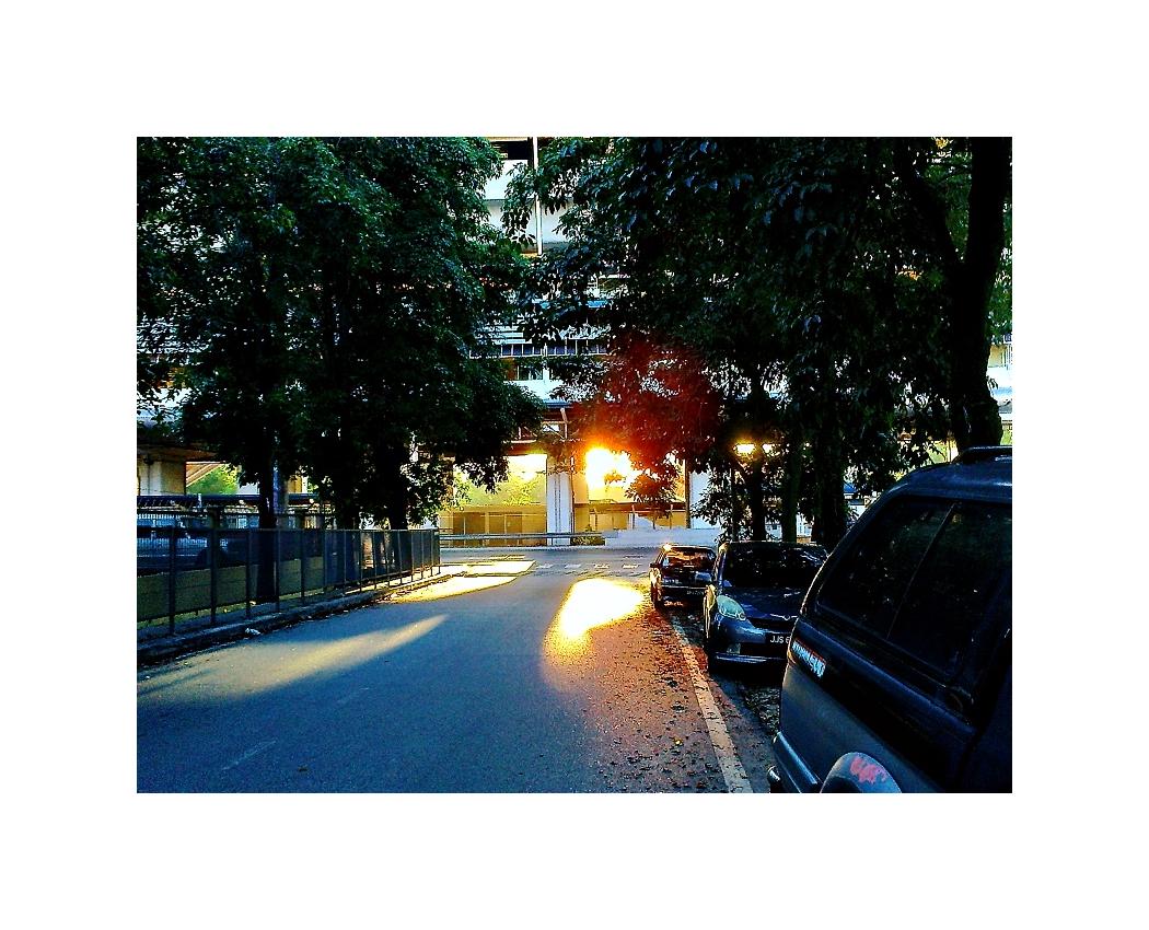 A Morning Walk #II 02