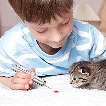 Cat/Dog Laser Pen Toy Training Tool - Keeps Your Pet Active