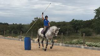 Portugal, working equitation, riitta reissaa, riitta kosonen, Pero Viegas, Horsexplore