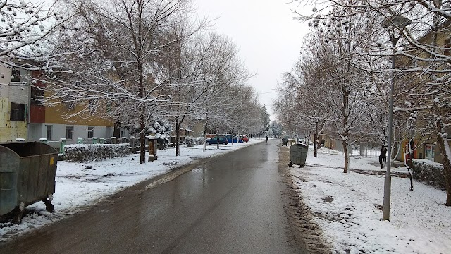 Dobro jutro! Jeste li slikali sneg ili ste odustali zato što je to već neko uradio?