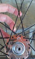 "Intelligent Design Cycles, PD-8 36 hole Dynamo Hub, IDC, ""Veterans and Their Pets"", ""Tour De PACLANTIC"", ""Harold & Daisy"""