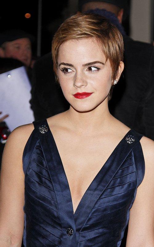 Emma Watson Nip Slip  Upskirt-4508