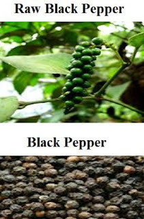 an image showing raw and dry black pepper