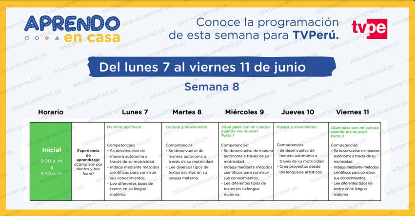 APRENDO EN CASA 2021: Programación del Lunes 7 al Viernes 11 de Junio - MINEDU - TV Perú y Radio Nacional (ACTUALIZADO SEMANA 8) www.aprendoencasa.pe