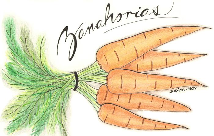 La multifacética zanahoria