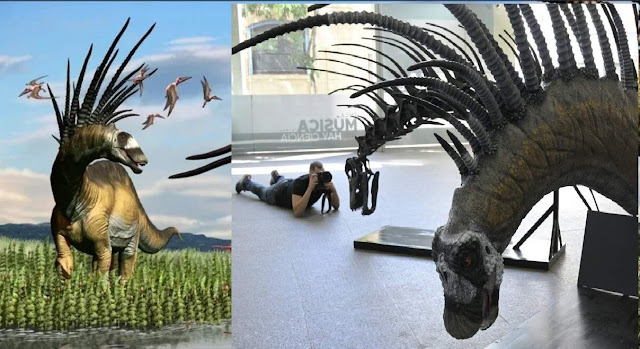 New Dinosaur Species With Spiky Backbone Discovered in Argentina