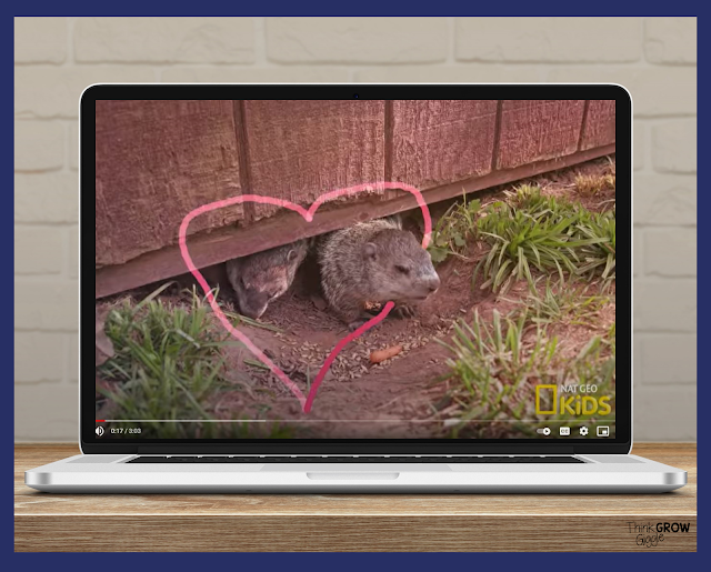 learn about groundhog day free video