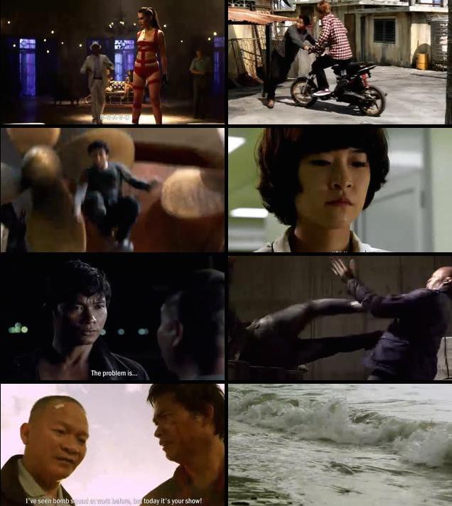 The Protector 2 2013 Hindi Dubbed BluRay 480p