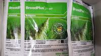 herbisida terbaik untuk padi, boardplus, cara menanam padi, rumput, gulma, jual pestisida, toko pertanian, toko online, lmga agro