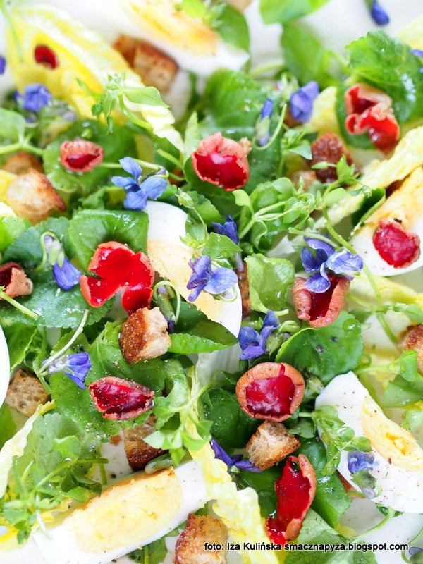 salatka z chwasta, salatka z grzybami, grzyby, czarki austriackie, fiolki wonne, gwiazdnica, chwasty, dzikusy, rosliny jadalne, grzyby jadalne, zebrane w lesie