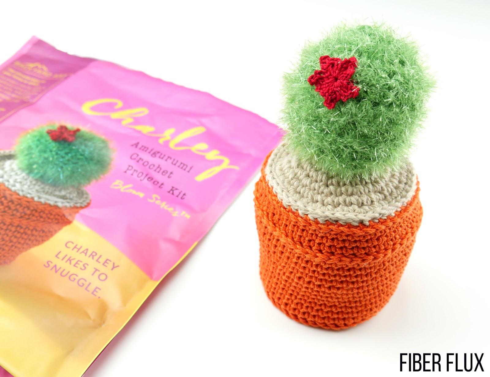 Crochet Cactus Kits - Crochet 365 Knit Too | 1234x1600