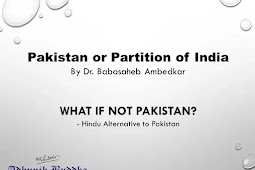 """Part III Chapter VII """"What if not Pakistan?"""""""