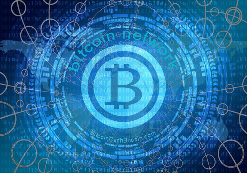 bitcoin cryptocurrency network