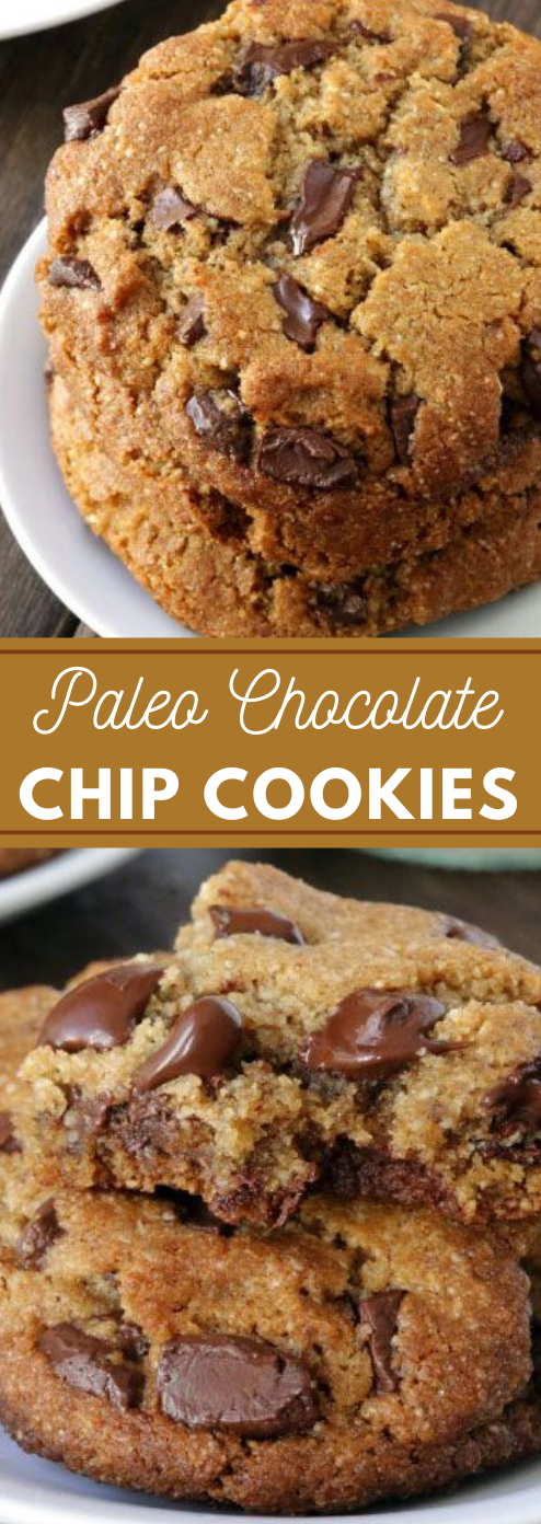 Perfect Paleo Chocolate Chip Cookies #desserts #cakes #cookies #chocolate #paleo