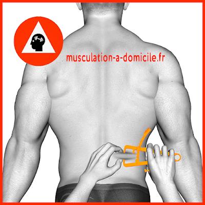 mesure bas du dos homme pince à plis cutanés adipomètre musculation fitness