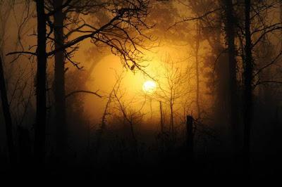Terra na escuridão