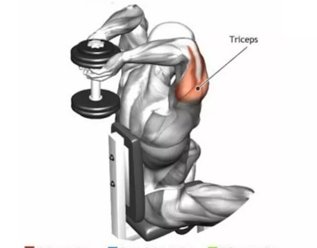 triceps overhead extension
