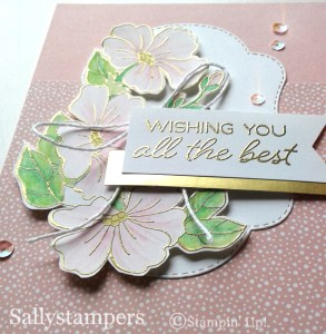 Blended Seasons Stampin Up