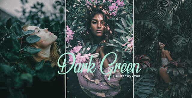 Lightroom dark green tone
