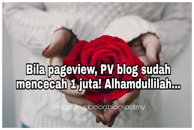 Bila pageview, PV blog sudah mencecah 1 juta! Alhamdullilah...