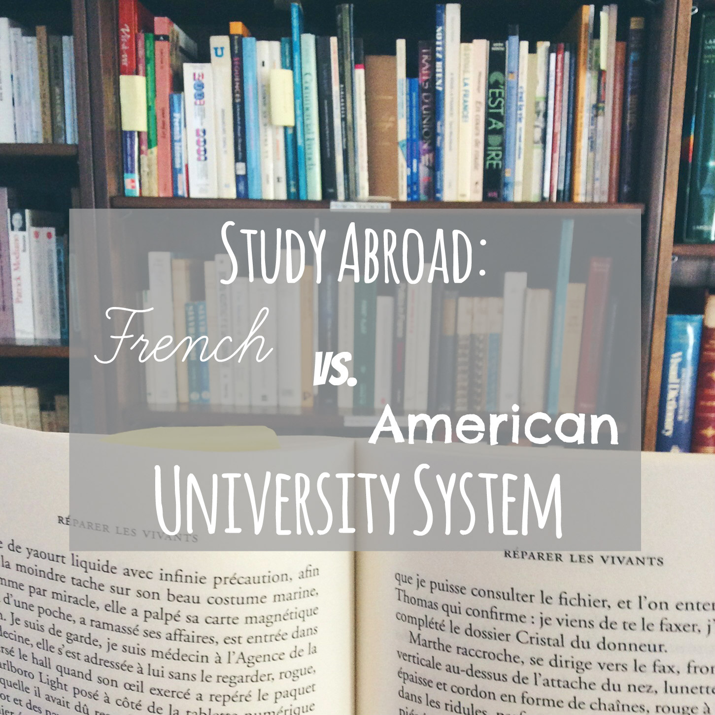 study abroad french university system