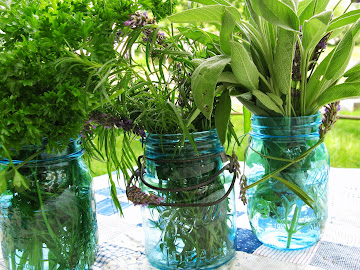 Herbs in a Jar