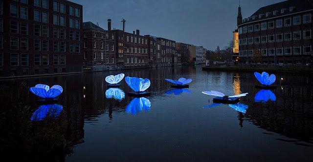 هولندا .. صور مهرجان الأضواء في العاصمة امستردام