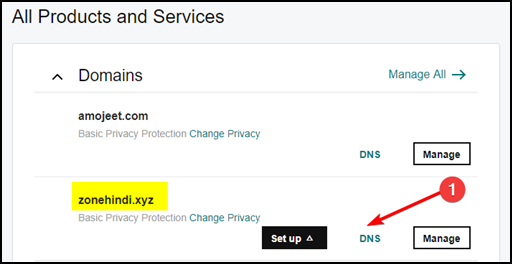 manage-godaddy-domain-DNS