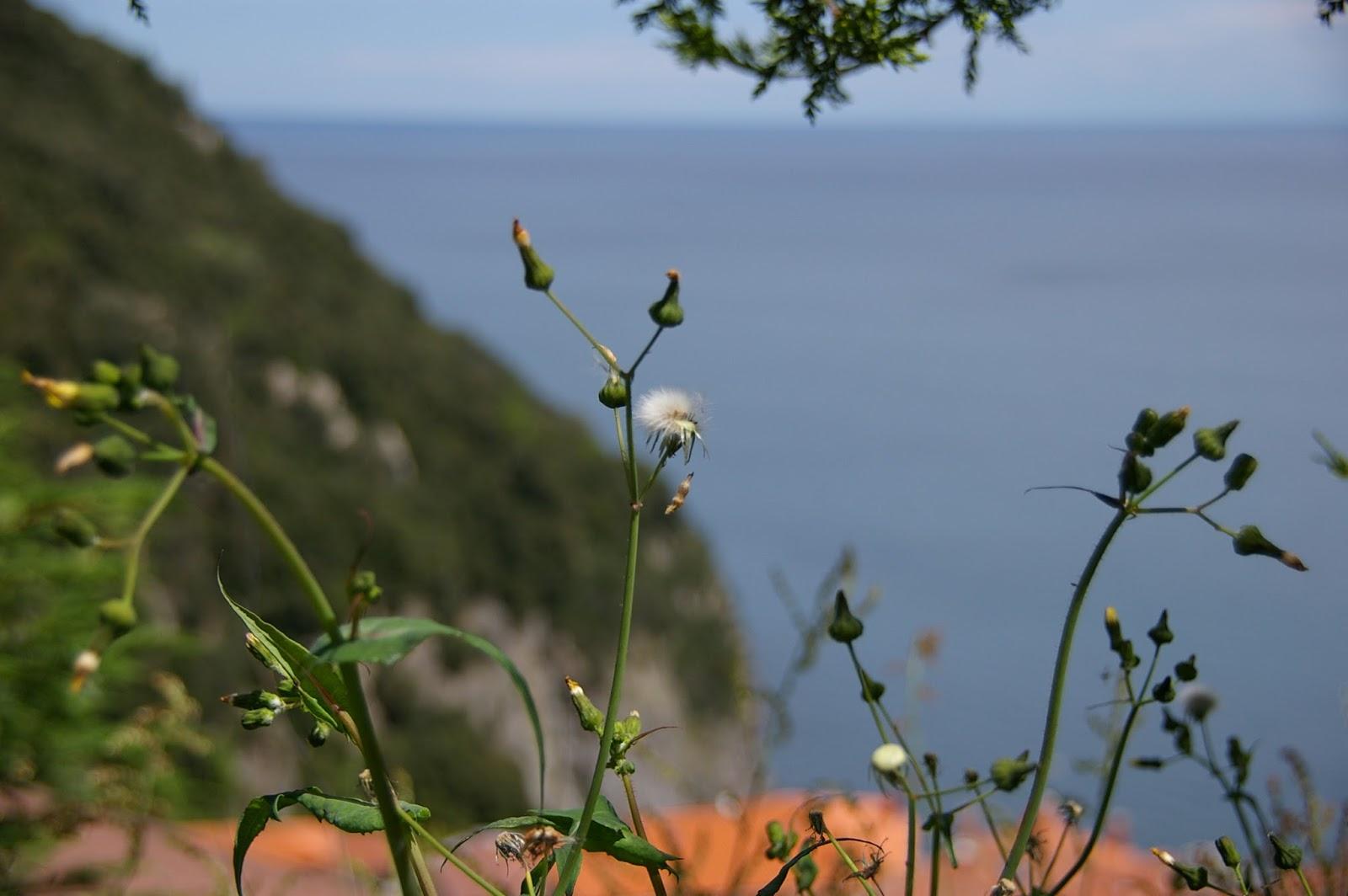 Kraj Basków wybrzeże