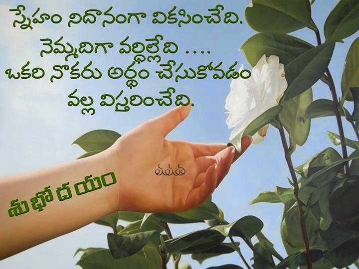 Telugu Good Morning Sms Message Status Wallpaper Whatsapp Fb