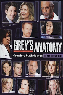 Grey's Anatomy S06 All Episode [Season 6] Complete Download 480p