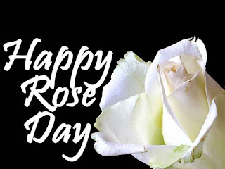 happy rose day photo