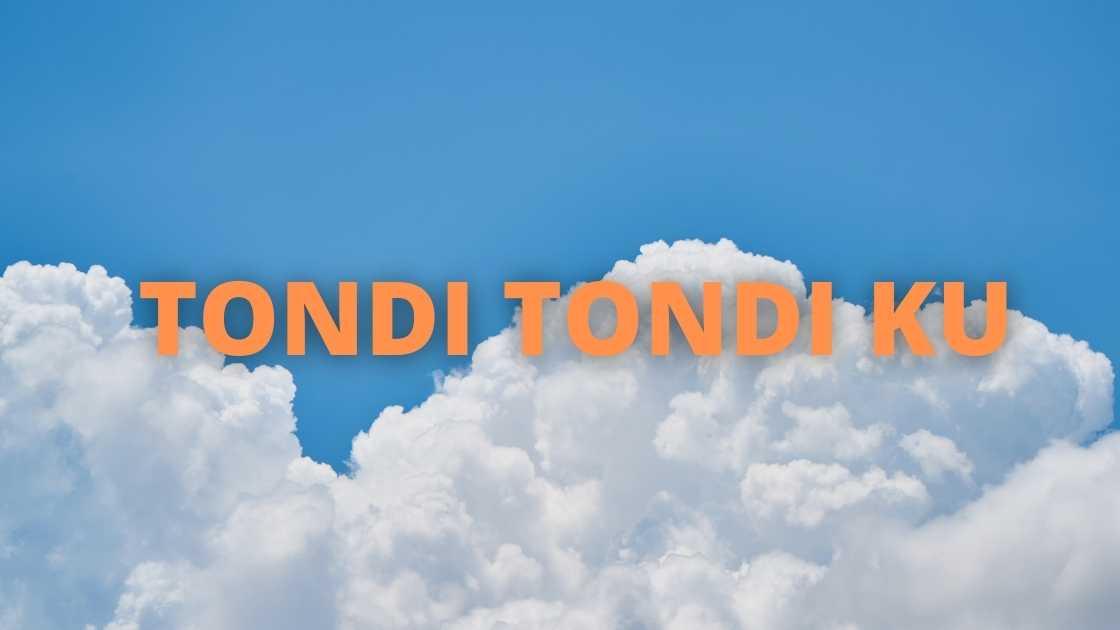 Tondi Tondi Ku Do Ho Lirik dari Style Voice