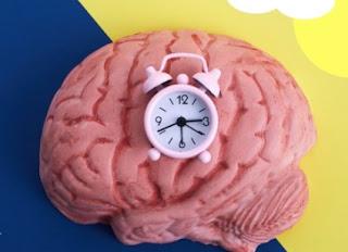 Ciclo circadiano. Ritmo de la vida