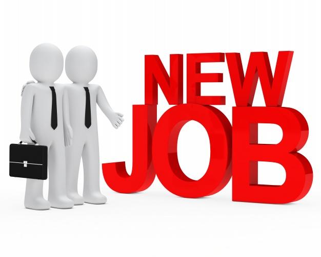 JOB POST: Director at Human Rights Law Network: Apply by November 30