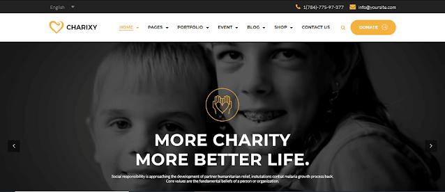Nonprofit Fundraising & Charity WordPress Themes With Donation System    Charixy