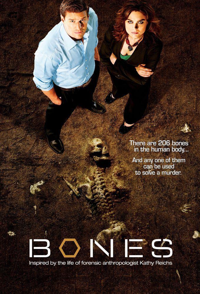Bones Temporada 1 a 3 Dual 1080p