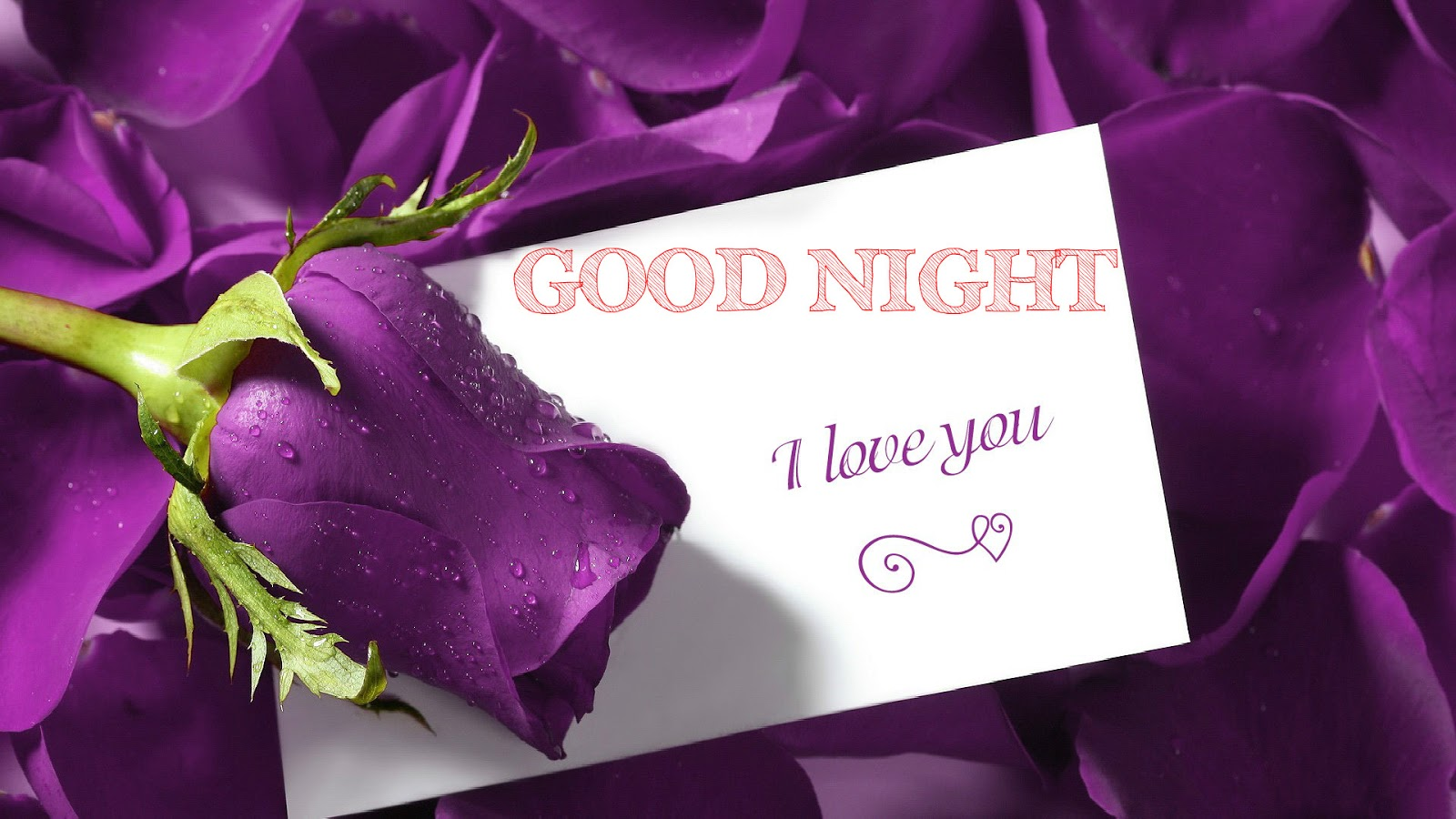 good night love letters