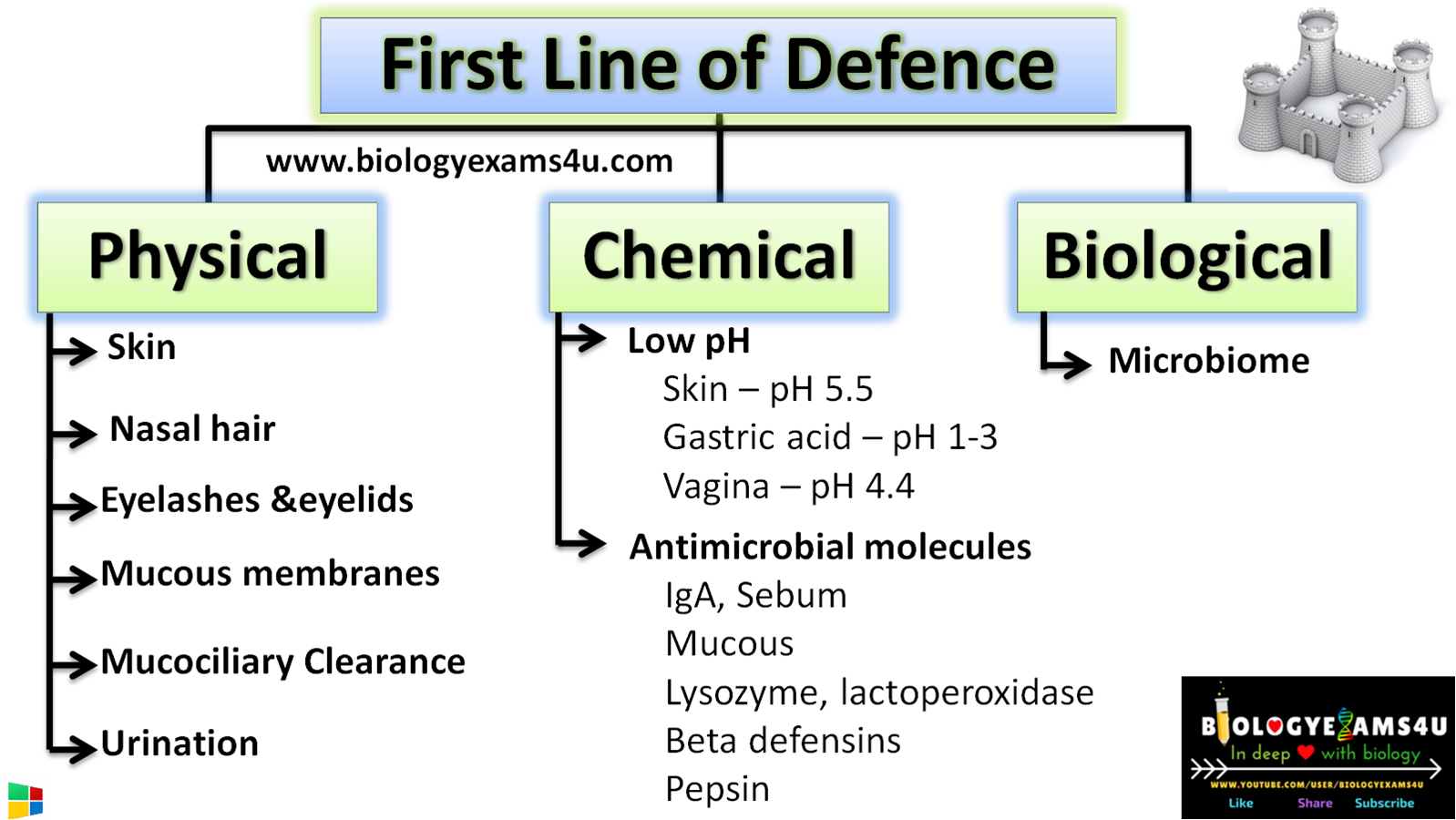 First Line of defence in immune system