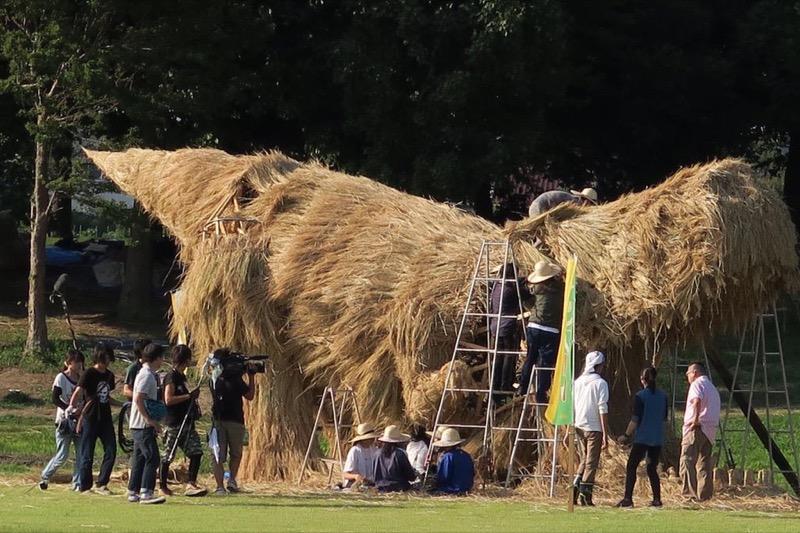 dinosaurus dari jerami ini menghiasi musim panen padi di