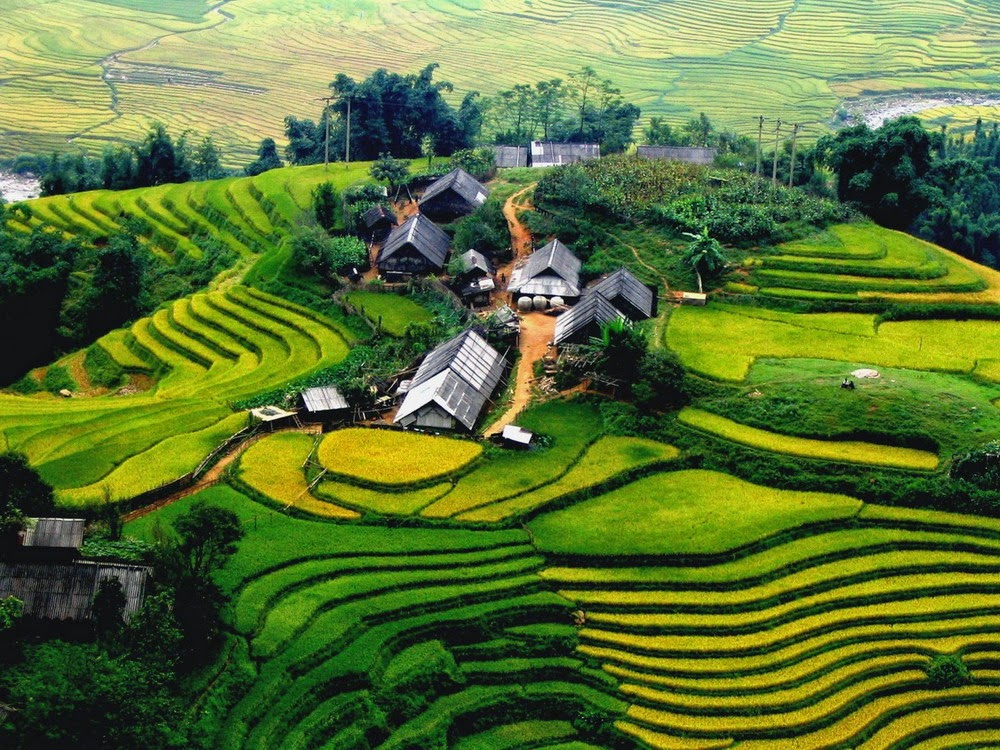 The best time of year to visit and trekking Sapa, Vietnam