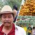 เปิดไร่ชิมอินทผลันถึงสวนแห่งแรก จ.ราชบุรี