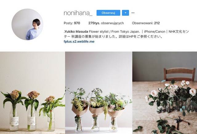 Nonihana- roslinne inspiracje