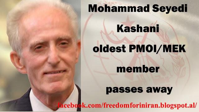Mohammad Seyedi Kashani