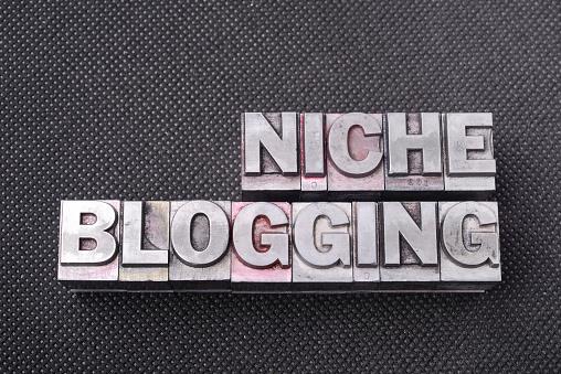 What is Niche?
