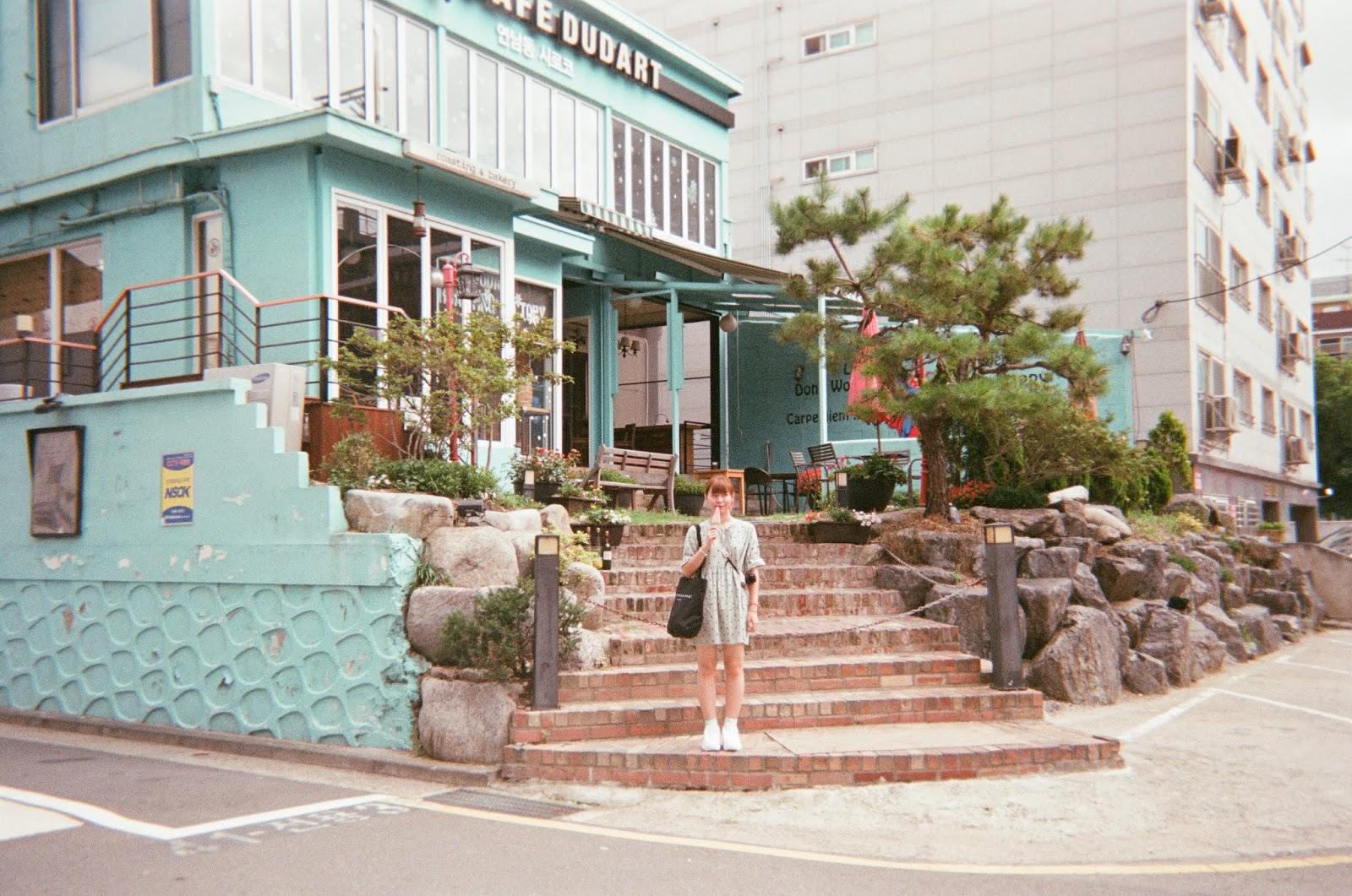 Seoul and Busan in Disposable Camera | www.bigdreamerblog.com