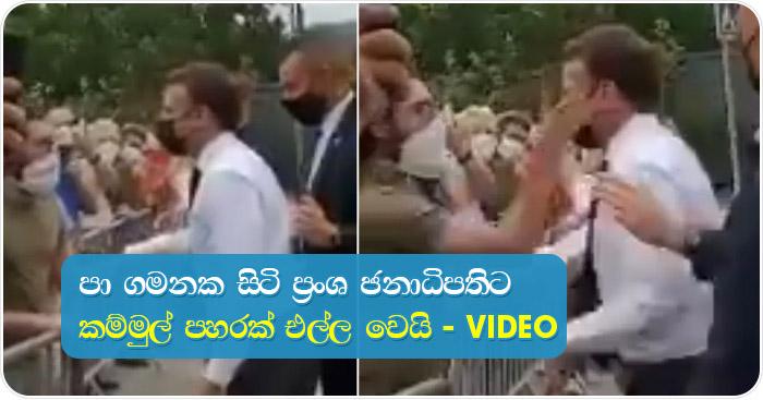 french-president slapped-video