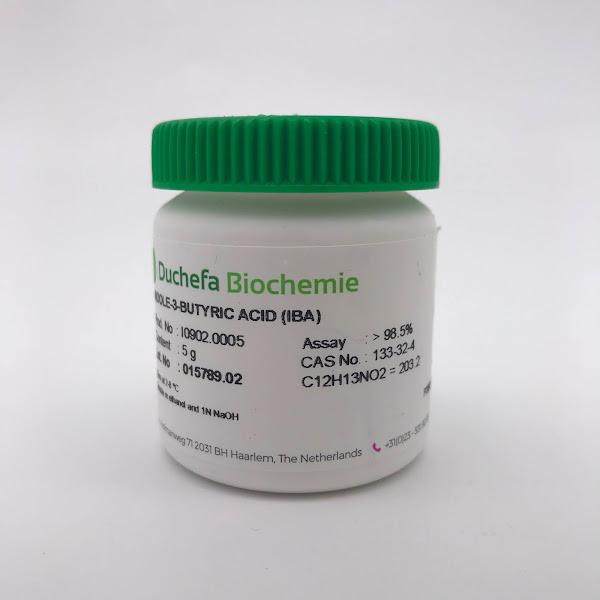 Hormone IBA (Indole-3-Butyric Acid)